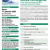 Corso Tecniche di Suture e Nodi Chirurgici Roma 17 gennaio 2020